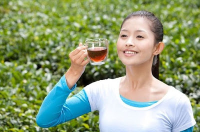 Uống trà có lợi cho sức khỏe
