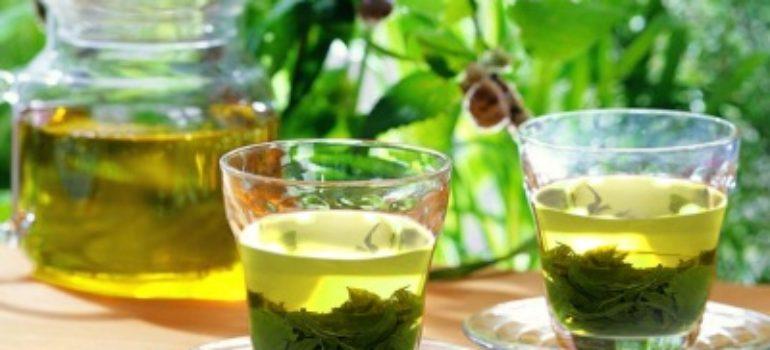 Nước trà xanh giúp hạ huyết áp
